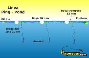 BOYAS PING PONG